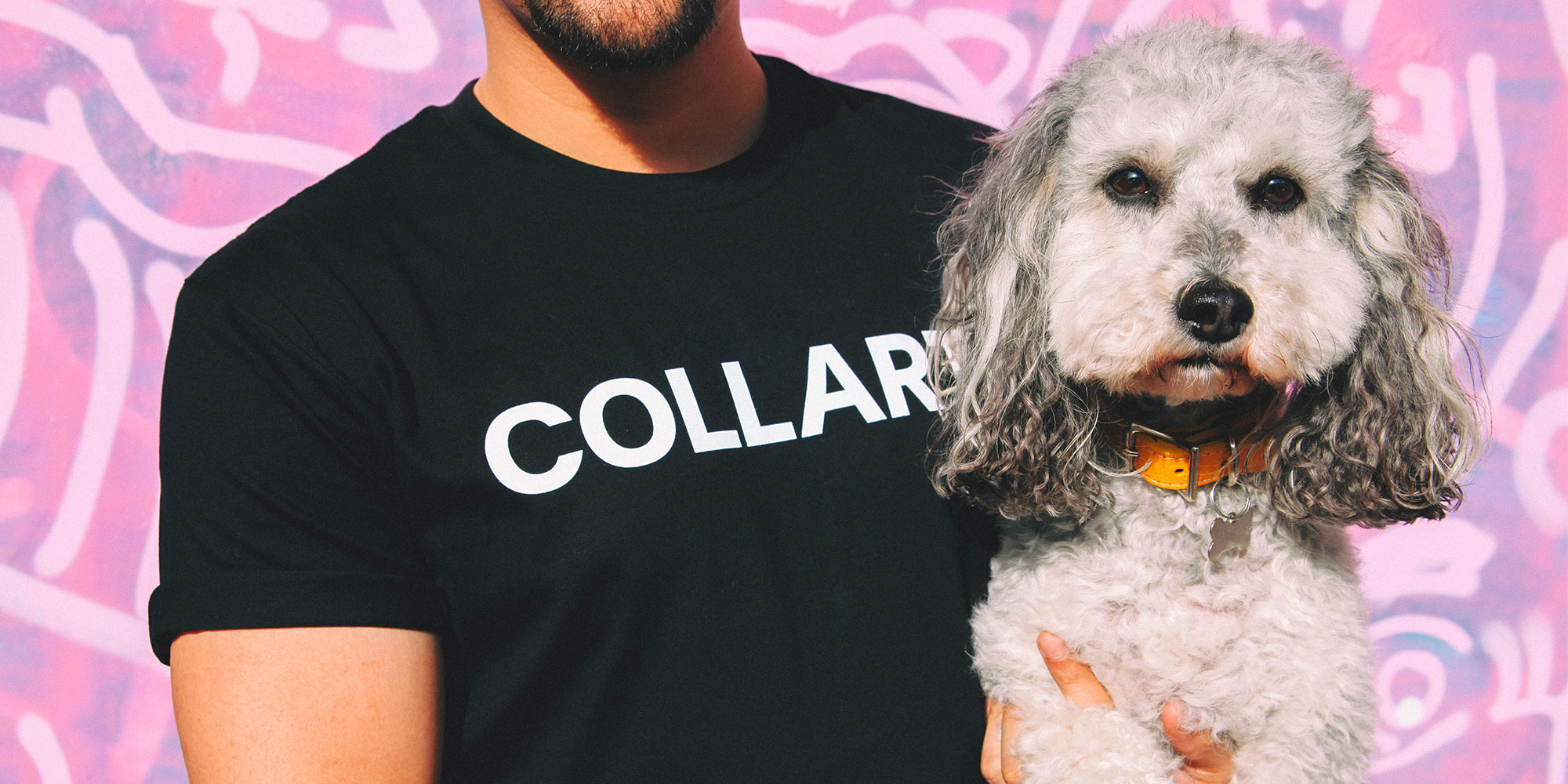 Collarts Launches New Merch Collection